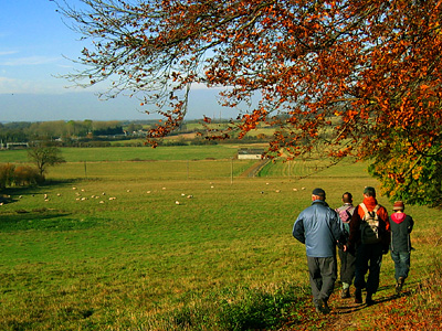 country-walk-1.jpg