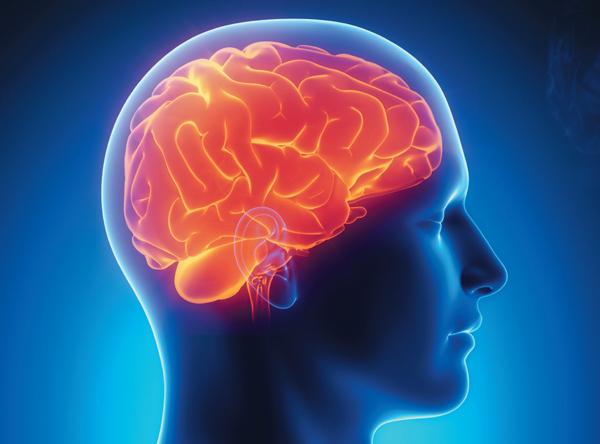Man-with-Brain_crop.jpg